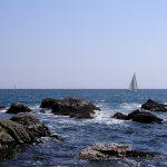 2010年の春も、やっぱり江の島で生しらす!