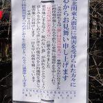 目黒川の桜 2011 #1