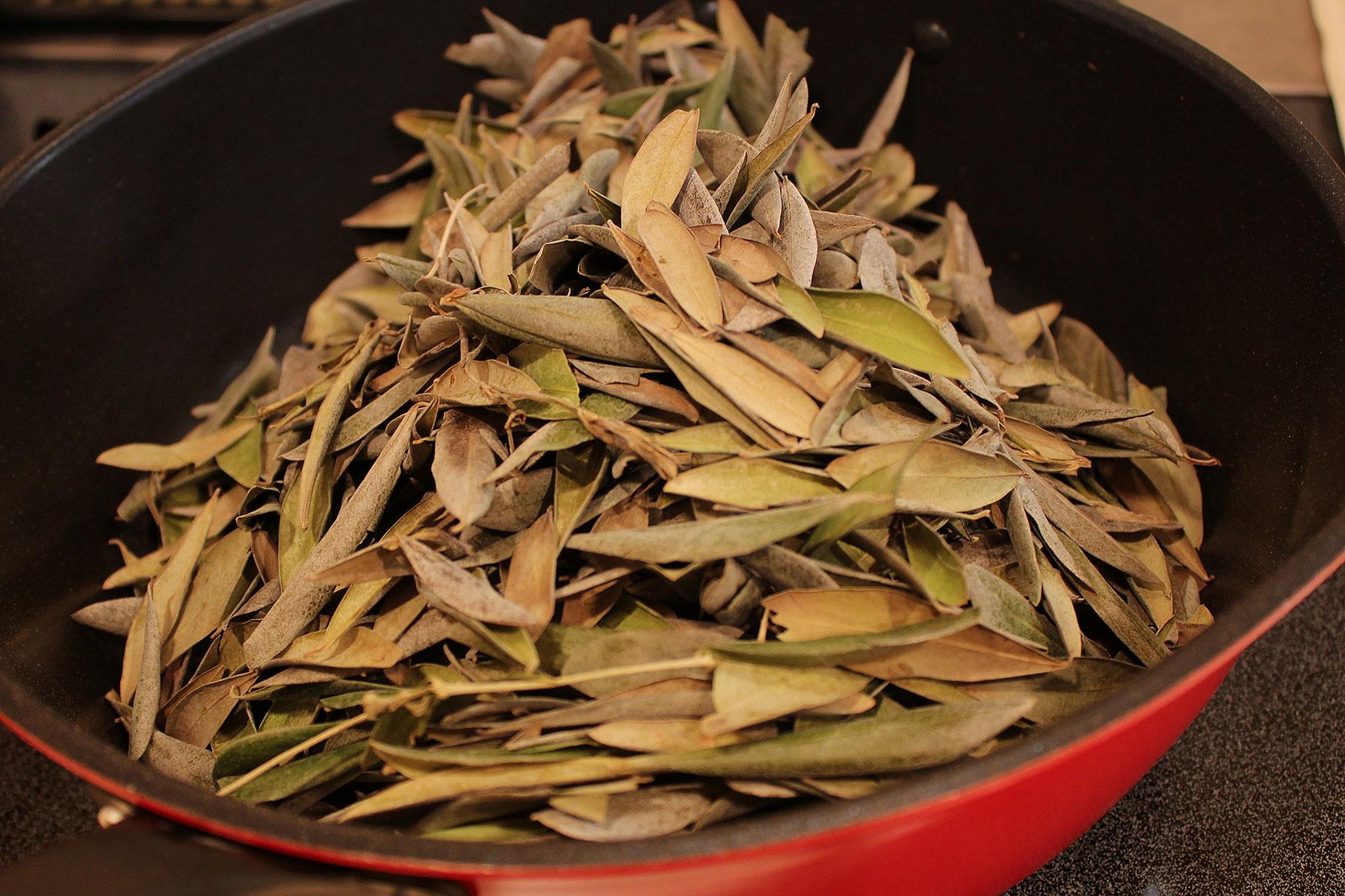 オリーブ茶葉
